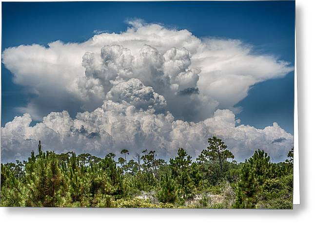 Storms A Brewing Greeting Card by Paul Freidlund