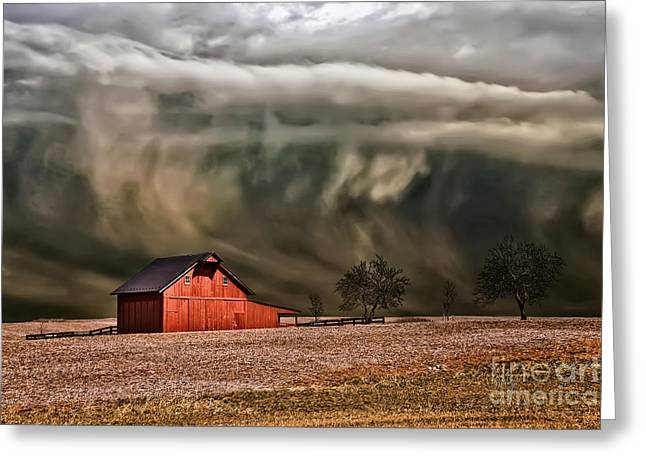 Bare Trees Greeting Cards - Storms Coming Greeting Card by Lois Bryan