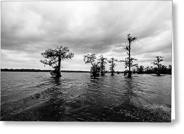 Stormy Afternoon Greeting Card by Scott Pellegrin