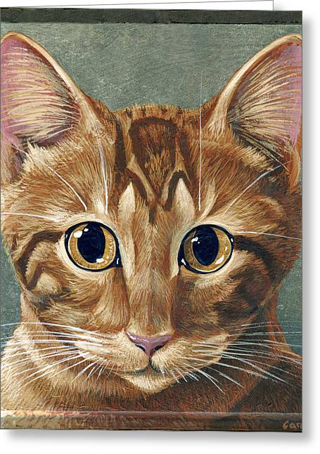 Orange Tabby Paintings Greeting Cards - Stormy Greeting Card by Cara Bevan