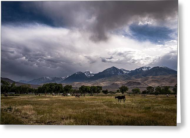 California Adventure Greeting Cards - Stormy Day in Big Pine Greeting Card by Cat Connor