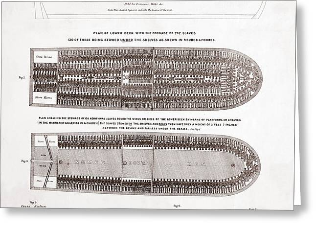 Stowage Of The British Slave Ship Brookes Under The Regulated Slave Trade Act  Greeting Card by American School