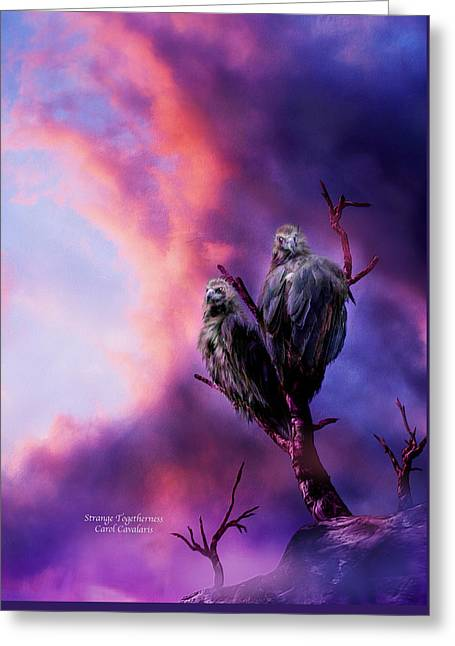 Bird Of Prey Greeting Card Greeting Cards - Strange Togetherness Greeting Card by Carol Cavalaris
