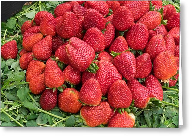 Souk Greeting Cards - Strawberries For Sale In Souk Greeting Card by Panoramic Images