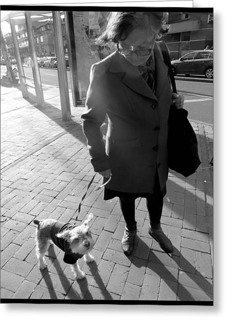 Dog Walking Greeting Cards - Street Portrait   #  60  Greeting Card by Daniel Gomez