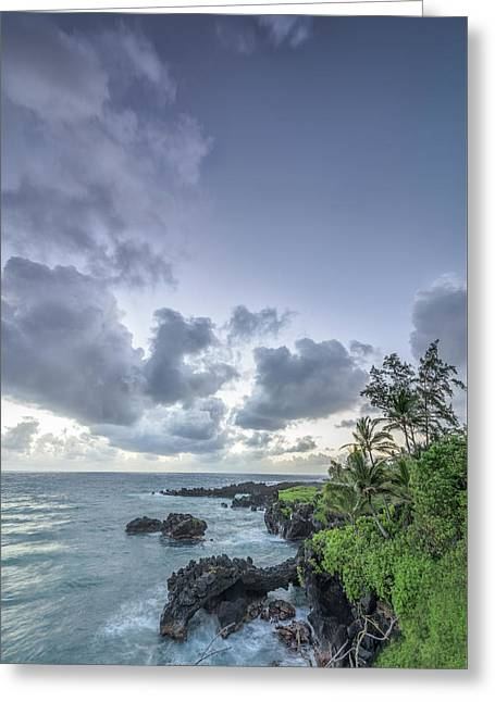 Photo Art Gallery Greeting Cards - Stretching Out Greeting Card by Jon Glaser