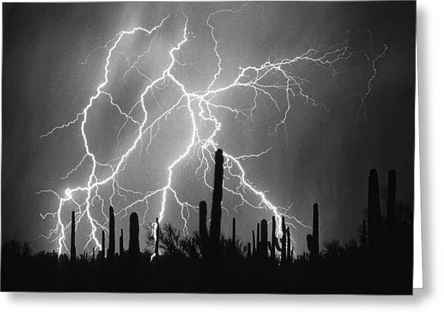 Arizona Lightning Greeting Cards - Striking Photography in Black and White Greeting Card by James BO  Insogna