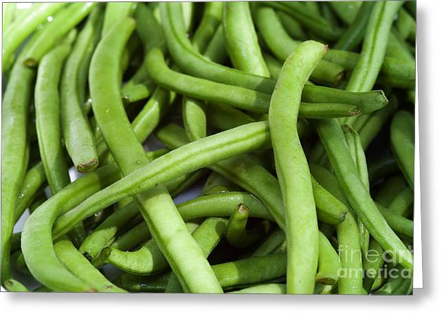 Green Beans Greeting Cards - String Beans Greeting Card by Michal Boubin