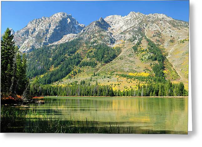 Wyoming Greeting Cards - String Lake Greeting Card by Greg Norrell