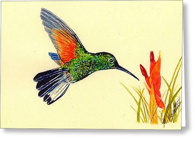 Stripe Tailed Hummingbird Greeting Card by Michael Vigliotti
