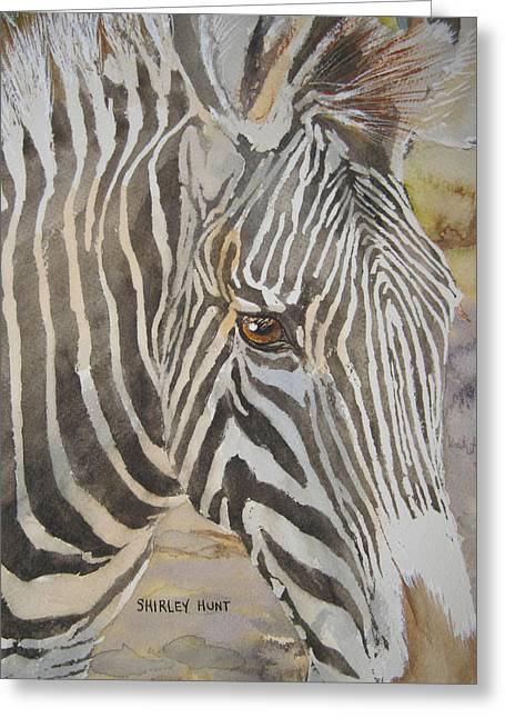 Zoological Greeting Cards - Stripes Greeting Card by Shirley Braithwaite Hunt