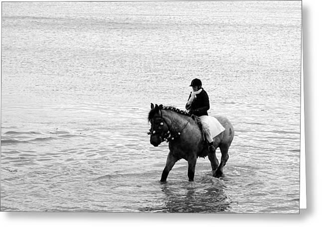 Sea Horse Greeting Cards - Stroa rijden Serooskerke Greeting Card by Jolly Van der Velden