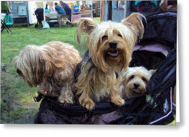 Puppies Mixed Media Greeting Cards - Stroll In The Park Greeting Card by Marilyn Nestell