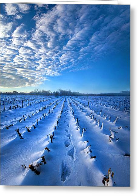 Strolling Between The Rows Greeting Card by Phil Koch