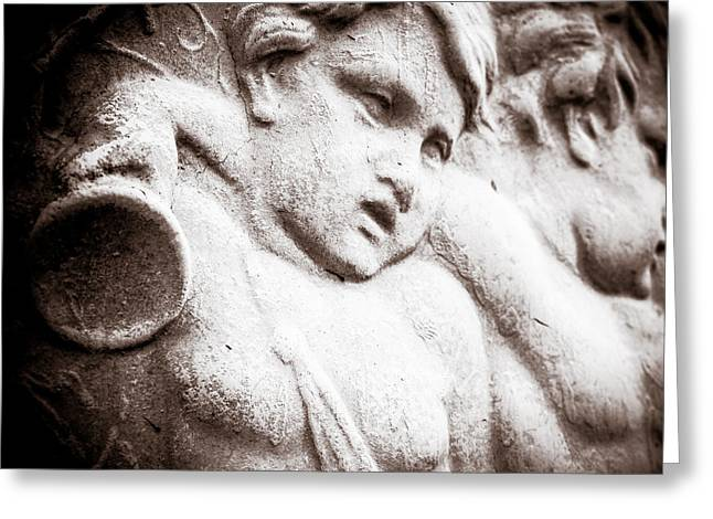 Photo Art Gallery Greeting Cards - Struggle Greeting Card by George Fivaz