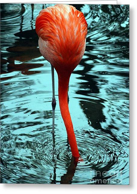 Wildlife Digital Art Greeting Cards - Stuck Greeting Card by Kendra Longfellow