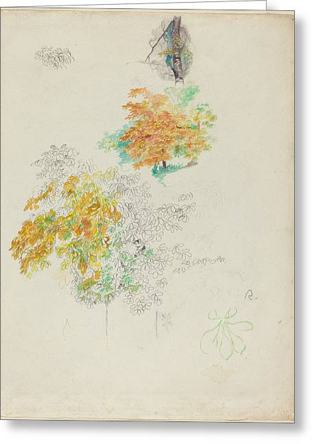 Famous ist Drawings Greeting Cards - Studies Of Trees Greeting Card by Auguste Renoir
