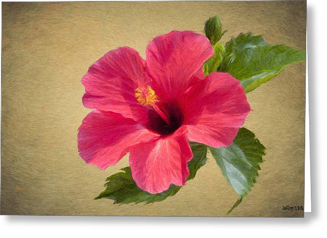 Hibiscus Greeting Cards - Study in Scarlet Greeting Card by Jeff Kolker
