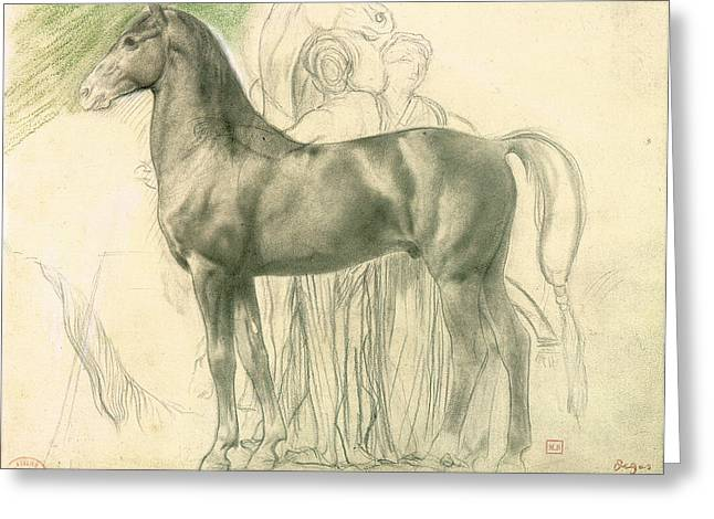 Figure Study Greeting Cards - Study of a Horse with Figures Greeting Card by Edgar Degas