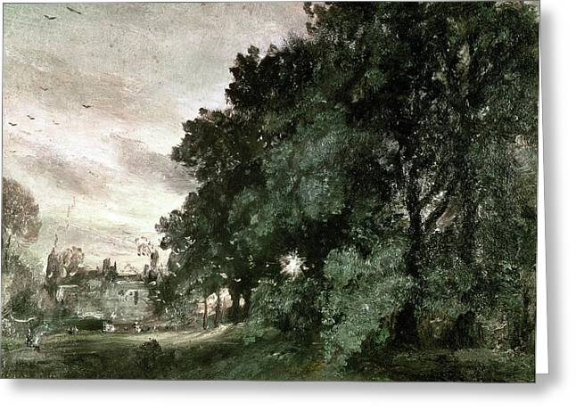 Study Of Birds Greeting Cards - Study of Trees Greeting Card by John Constable