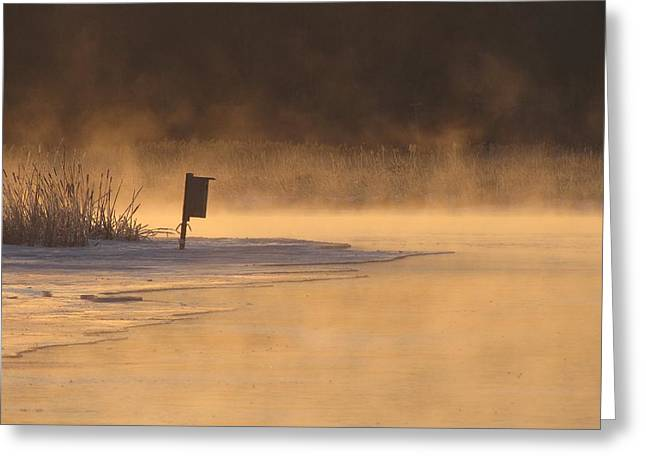 Foggy Beach Greeting Cards - Sub Zero Sunrise on Pentwater River Greeting Card by Jane Greiner