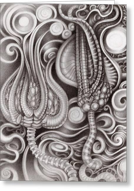 Organic Drawings Greeting Cards - Subterranean Garden Greeting Card by Kati Astraeir