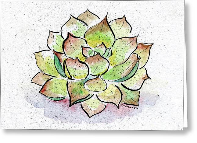 Succulent Greeting Card by Diane Thornton