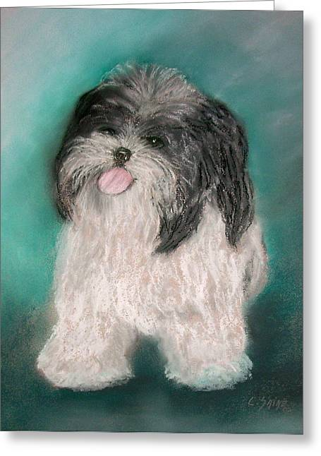 Puppies Pastels Greeting Cards - Such a Cute Puppy Greeting Card by Carolyn Saine