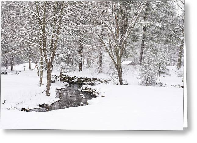 Sudbury Ma Winter Stream Greeting Card by Toby McGuire
