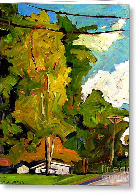 Sugar Maple Sunshine Greeting Card by Charlie Spear