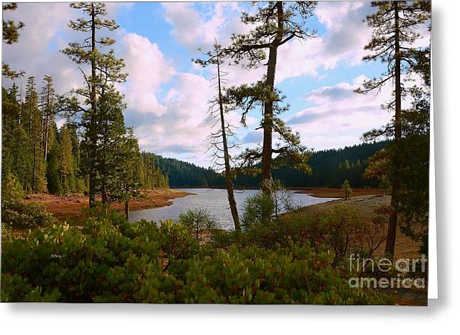 Purchase Greeting Cards - Sugar Pine Lake Trail Greeting Card by Patrick Witz