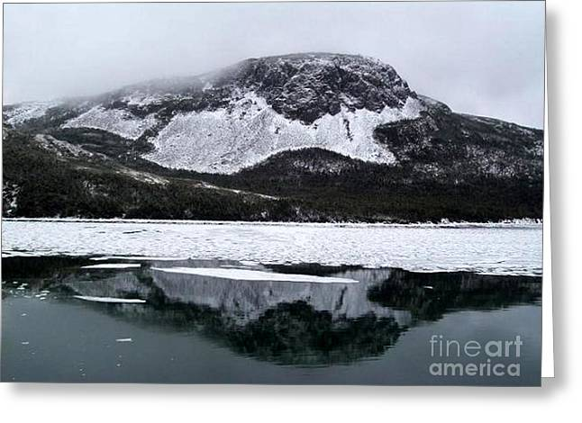 Floating Ice Sheet Greeting Cards - Sugarloaf Hill Reflections in Winter Greeting Card by Barbara Griffin