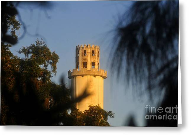 Sulphur Spring Greeting Cards - Sulphur Springs Tower Greeting Card by David Lee Thompson