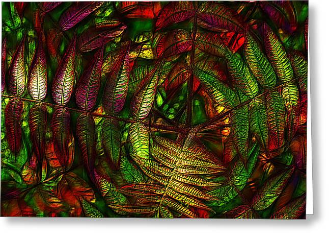 Photo Art Gallery Greeting Cards - Sumac Autumn Foliage Greeting Card by Jean-Marc Lacombe