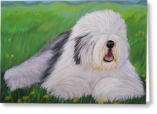 Sheepdog Greeting Cards - Summer Afternoon Greeting Card by Sharon Nummer