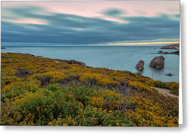 Big Sur Beach Greeting Cards - Summer Blooms Greeting Card by Jonathan Nguyen