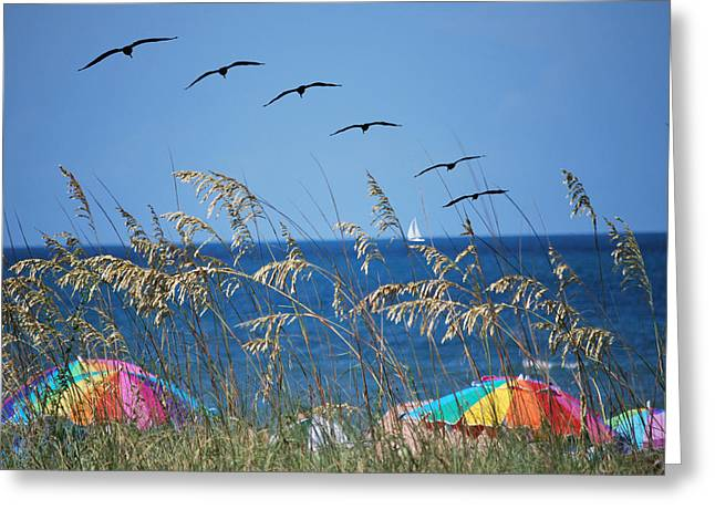Summer Breeze Greeting Card by Adele Moscaritolo