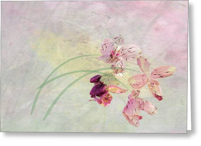 Summer Breeze Greeting Card by Rosalie Scanlon