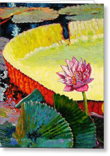 Summer Colors On The Pond Greeting Card by John Lautermilch