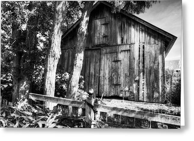 Rural Indiana Greeting Cards - Summer Country Barn BW Greeting Card by Mel Steinhauer