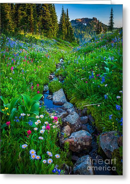 Northwest Greeting Cards - Summer Creek Greeting Card by Inge Johnsson