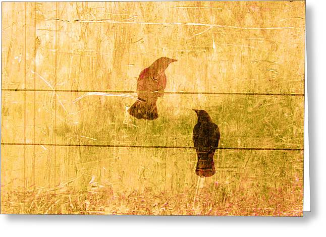 Blackbirds Greeting Cards - Summer Crows Greeting Card by Carol Leigh
