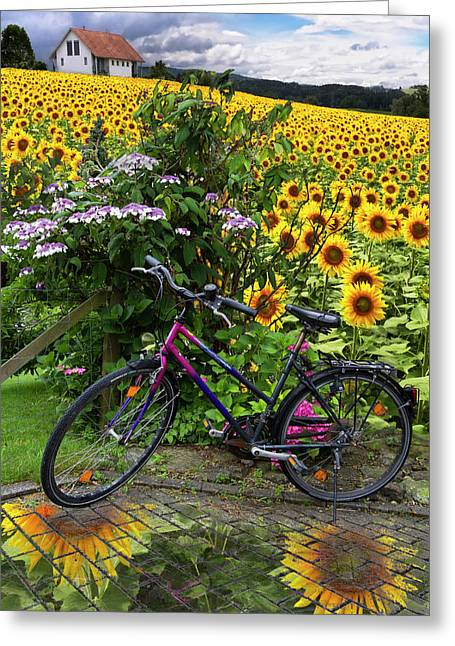 Summer Cycling Greeting Card by Debra and Dave Vanderlaan
