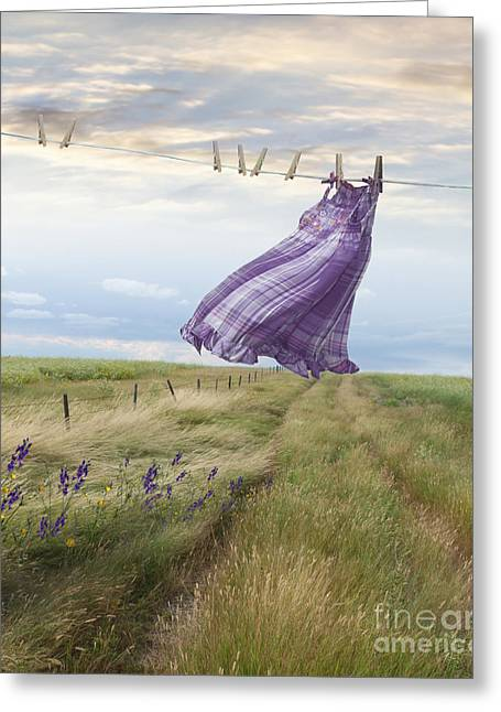 Plaid Dress Greeting Cards - Summer dress blowing on clothesline with girl walking down path Greeting Card by Sandra Cunningham