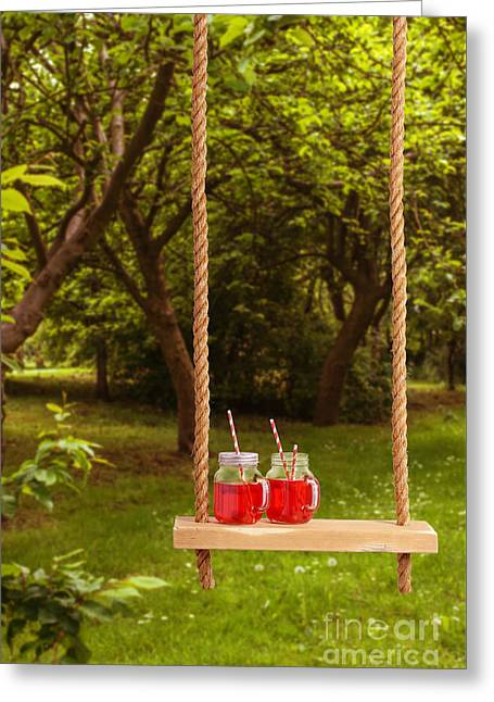 Orchard Greeting Cards - Summer Drinks On Swing Greeting Card by Amanda And Christopher Elwell