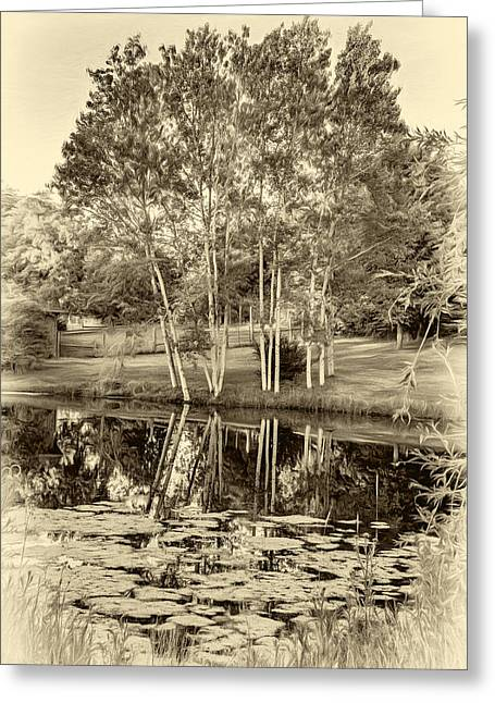 Summer Evening 2 - Sepia Greeting Card by Steve Harrington
