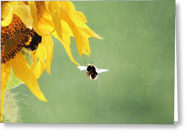Summer Feeling Greeting Card by Heike Hultsch
