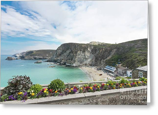 Summer Flowers In St Agnes Greeting Card by Terri Waters