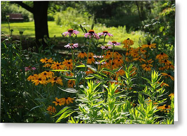Recently Sold -  - Shower Curtain Greeting Cards - Summer Garden Greeting Card by Yvonne Nowicka-Wright