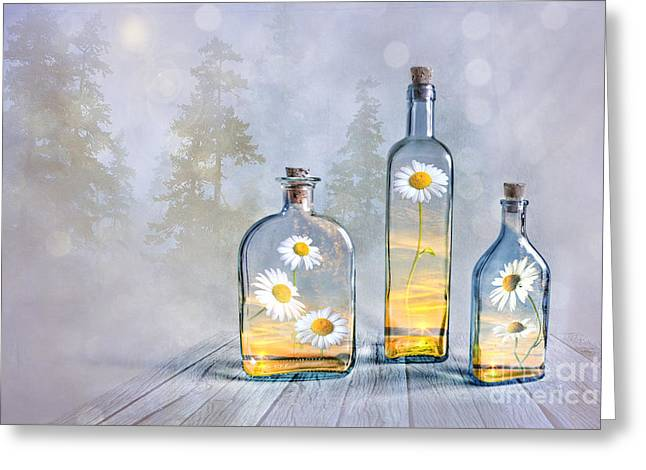 Summer In A Bottle Greeting Card by Veikko Suikkanen